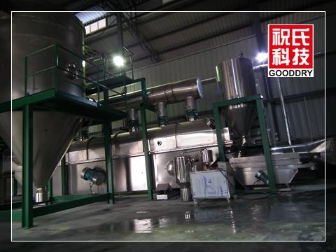 成都科利隆清洁化WDG连续生产线_副本
